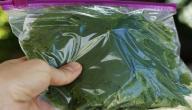 طريقة حفظ ورق العنب بالفريزر