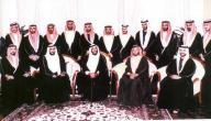 كم عدد أبناء الشيخ زايد