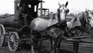 وسائل النقل في الماضي والحاضر