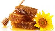 فوائد النحل والعسل