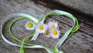 أجمل عبارات الحب والعشق