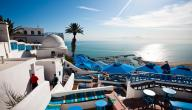 وصف لمدينة سيدي بوسعيد