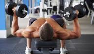 تمارين تقوية العضلات للمبتدئين