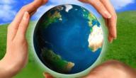 مقالة عن البيئة