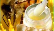 ما فائدة غذاء ملكات النحل للإنسان