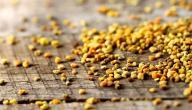 ما هي فوائد حبوب لقاح النحل