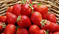 ما هي فوائد الفراولة