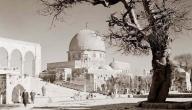 لمحة تاريخية عن فلسطين