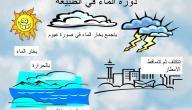 ما أهمية دورة الماء