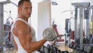 مفهوم العضلات