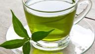 ما هي فوائد شاي غصن البان