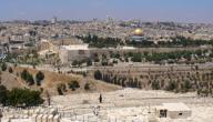 لمحة عن فلسطين