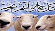 لماذا سمي عيد الأضحى بالعيد الكبير