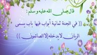ما فائدة شهر رمضان