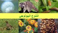 مفهوم التنوع البيولوجي