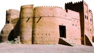 مفهوم علم التاريخ ومهمة المؤرخ
