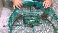 كيف تصنع فخاً للطيور