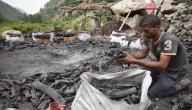 صناعة الفحم الطبيعي