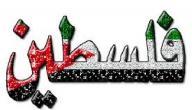 مقالة عن فلسطين الحبيبة