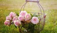 كلام عن الزهور