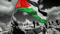 عدد سكان فلسطين في الداخل والخارج
