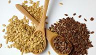 ما هي فوائد بذرة الكتان وأضرارها