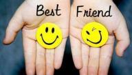 ماذا تعني الصداقة