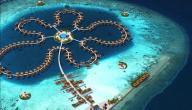 عدد جزر المالديف