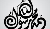 كم عدد عمات النبي