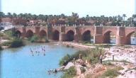 محافظة ديالي