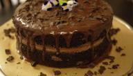 كيك عيد ميلاد بالشوكولاتة