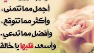 كلمات وعبارات جميلة عن الحياة