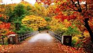 4 دول استمتع بزيارتها هذا الخريف