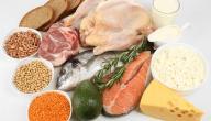 ما هي أضرار البروتين