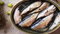فوائد سمك السردين المعلب
