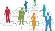 عناصر التنظيم الإداري