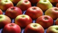 فوائد التفاح في الصباح