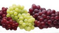 فوائد العنب للحمل