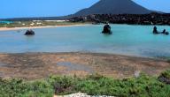 جزيرة كمران في اليمن