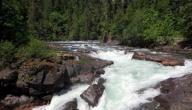 بحث حول مصادر الماء