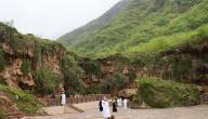 نبذة عن عمان