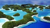 جزيرة غالاباغوس