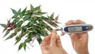 ما هو علاج مرض السكري بالأعشاب