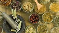 علاج عسر الهضم بالأعشاب الطبيعية
