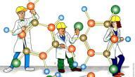 المركبات العضوية ومجموعاتها الوظيفية