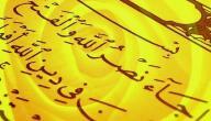 ما سبب نزول سورة النصر