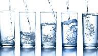 فوائد شرب الماء على معدة فارغة