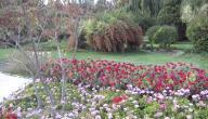 مدينة أصفهان السياحية