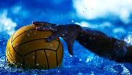 عدد لاعبي فريق كرة الماء