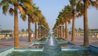 كم عدد سكان محافظة الشرقية